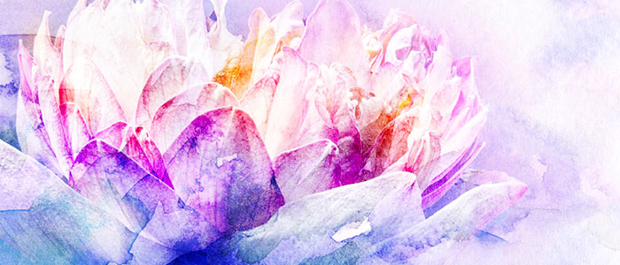 Watercolor of flower