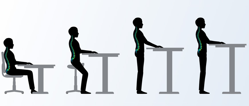 Graphical progression of spine position from siting to standing