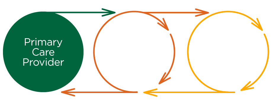 Circles showing flow of services from Primary Care provider to Cardiology Consult to Treatments and Procedures