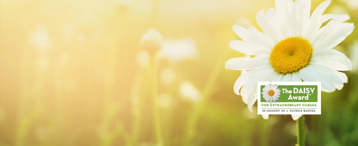 A sunlit daisy in a field with Daisy Award logo