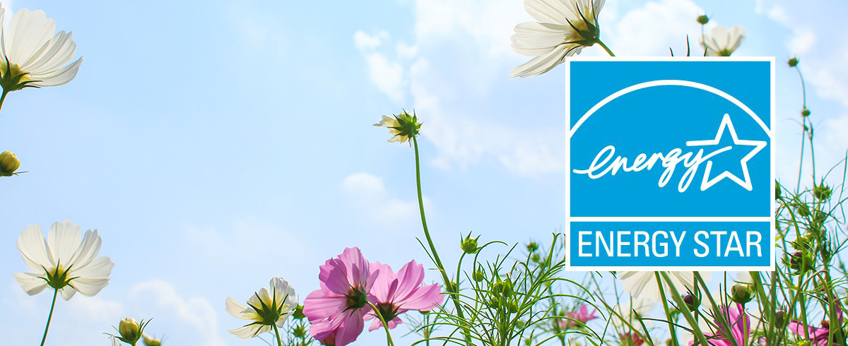 Energy Star logo on top of field of cosmo flowers and blue sky