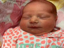 Baby Paxley
