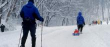 People out skiing and walking trails on a snowy day